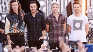 Vì đâu One Direction 'đột tử' trên đỉnh vinh quang?
