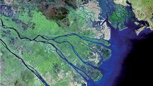 Gần nửa diện tích Đồng bằng sông Cửu Long bị ngập úng nếu nước biển dâng