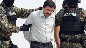 """Mexico thu 11 chiếc máy bay trong chiến dịch lùng bắt """"bố già"""" El Chapo"""