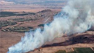Chuyên gia Mỹ: Vụ bắn rơi máy bay Nga 'là tình huống rất khó tránh'