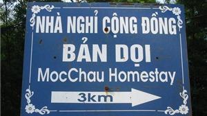 Đi Mộc Châu cứ ở những homestay như thế này là hay nhất