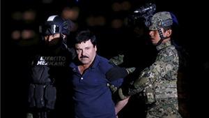 Trùm ma túy 'El Chapo' sắp khuynh đảo 300 rạp chiếu Mexico