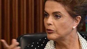 Brazil huy động quân đội 'tuyên chiến' với virus Zika