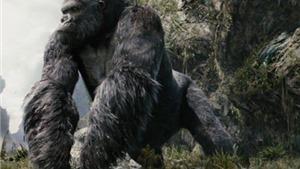 'Kong: Skull Island' lấy bối cảnh 'thời Việt Nam' thập niên 70?