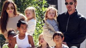 Angelina Jolie: Không hề muốn làm mẹ cho tới khi tới Campuchia
