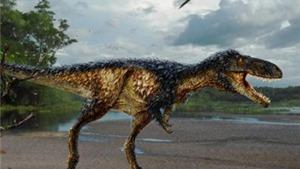Giải mã bí ẩn sự tiến hóa của khủng long bạo chúa