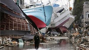 Những cư dân ngày ấy của Fukushima