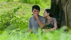 Lịch chiếu miễn phí 'Tôi thấy hoa vàng trên cỏ xanh' và 17 phim dự Cánh diều