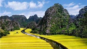 Tour Hoa Lư-Tam Cốc Mùa Lúa Chín-Hồ Tây-Hạ Long-Yên Tử: Mê hoặc đất kinh kỳ