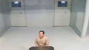 VIDEO: Trùm ma túy Mexico El Chapo lại vượt ngục?