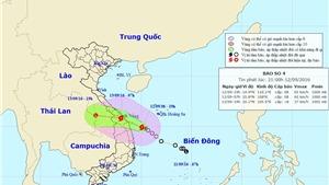 Tin mới nhất: Sáng mai, bão số 4 đổ bộ vào Trung Trung Bộ