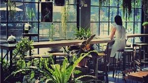 Gardenista Cafe: Uống cafe và 'sống chậm' ở đây thì tuyệt