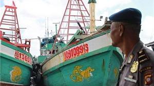 Phản đối mạnh mẽ hành vi sử dụng vũ lực của lực lượng chức năng Indonesia đối với ngư dân Việt Nam