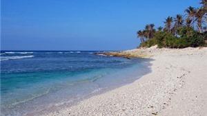 Thanh Hóa: Chung tay làm sạch và bảo vệ môi trường biển