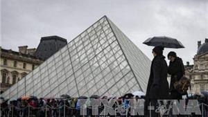 Cảnh sát Pháp giám định ADN kẻ tấn công Bảo tàng Louvre