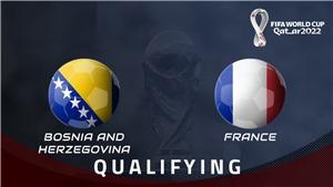 Soi kèo nhà cáiBosnia vs Pháp. Vòng loại World Cup 2022 khu vực châu Âu
