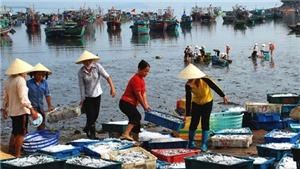 Sầm Sơn, Hải Tiến, Hải Hòa... những bãi biển đẹp để du lịch Thanh Hóa vươn xa