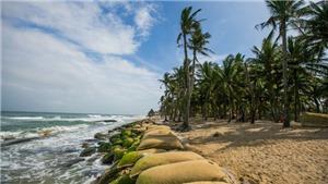 Quảng Nam đẩy mạnh phát triển kinh tế-xã hội hướng ra biển