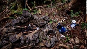 Thăm khu rừng tự sát rợn tóc gáy ở Nhật Bản
