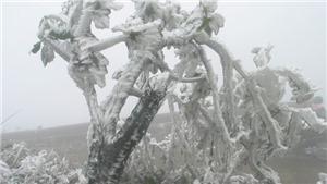 Dự báo thời tiết ngày 1/2: Rét đậm và kéo dài nhất trong suốt 2 năm qua, băng tuyết lan rộng