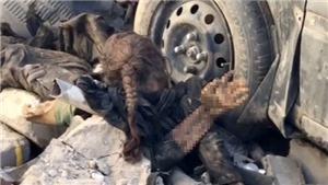Bức ảnh gây sốc thi thể bé gái trong đống đổ nát ở Mosul
