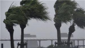Siêu bão có thể nhấn chìm 1/3 thủ đô Tokyo, Nhật Bản