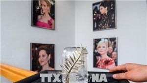 Bí ẩn Cành cọ bằng vàng 24 carat của LHP Cannes