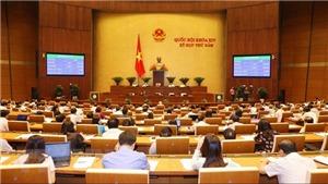 Quốc hội biểu quyết thông qua dự thảo Luật Quốc phòng sửa đổi