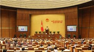Đại biểu Quốc hội: Lùi thời hạn xem xét Luật đặc khu kinh tế là sáng suốt