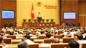 Quốc hội thông qua Luật Thể dục, thể thao sửa đổi bổ sung quy định đặt cược thể thao
