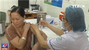 Chưa có vắc xin phòng dại của Tàu tại Việt Nam