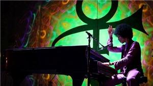 'Piano And A Microphone 1983' của Prince: Nghe một tài năng lớn lao trải lòng