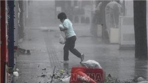 Bão Trami gây thiệt hại lớn ở thủ đô Tokyo