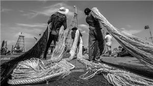Nhiếp ảnh gia Mỹ Dũng: Nặng lòng với biển