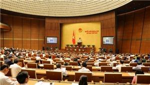 Tuần làm việc thứ ba, Kỳ họp thứ 6, Quốc hội khóa XIV