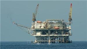 Mỹ không muốn Saudi Arabia và OPEC cắt giảm sản lượng dầu