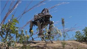 NATO phát triển robot bán tự động chống khủng bố