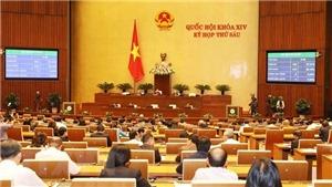 Quốc hội biểu quyết Luật Phòng, chống tham nhũng, Luật Công an nhân dân (sửa đổi)