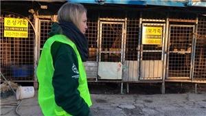 Đóng cửa lò mổ chó lớn nhất Hàn Quốc