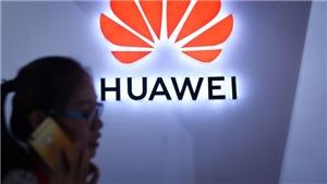 Giám đốc tài chính tập đoàn Huawei bị bắt: Canada đang chịu sức ép lớn từ Mỹ?