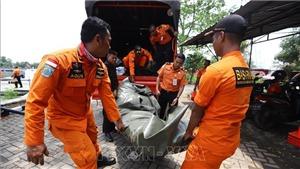 Rơi máy bay tại Indonesia: Lion Air nối lại chiến dịch tìm kiếm