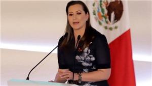 VIDEO: Rơi trực thăng, nữ thống đốc bang Mexico cùng chồng bị thiệt mạng