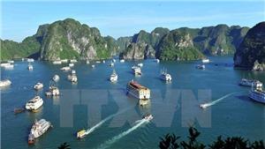 Đình chỉ hoạt động 2 tàu du lịch do vi phạm quy định về quản lý hoạt động tàu du lịch trên vịnh Hạ Long
