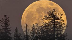 Siêu trăng xuất hiện vào rằm tháng Giêng