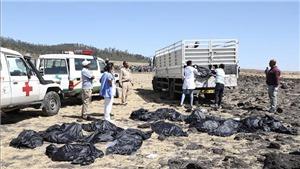 Vụ tai nạn máy bay Ethiopia: Ít nhất 12 nhân viên LHQ thiệt mạng