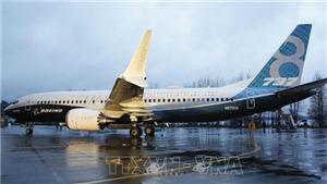 Boeing quyết định tạm ngừng giao máy bay 737 MAX