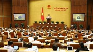Kỳ họp thứ 7, Quốc hội khóa XIV: Khắc phục tình trạng 'vào dễ, ra khó' trong quản lý viên chức