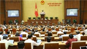 TRỰC TIẾP: Bộ trưởng Bộ Công an Tô Lâm đăng đàn đầu tiên trả lời chất vấn
