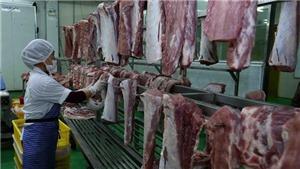 Hà Nội chủ động kiểm soát cơ sở giết mổ bình ổn giá thị trường thịt lợn trước dịch tả lợn châu Phi