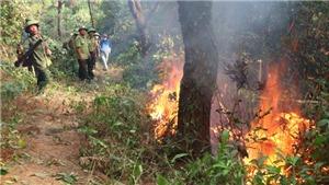 Đám cháy tại Nghi Xuân, Hà Tĩnh bùng phát trở lại